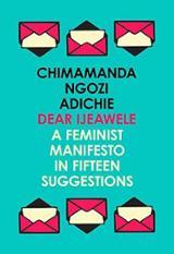 Dear Ijeawle or a Feminist Manifesto in Fifteen Suggestions