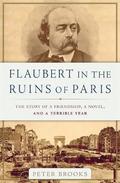 Flaubert in the Ruins of Paris