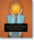 The Accidental Mind: How Brain Evolution Has Given Us Love, Memor