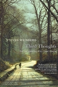 Third Thoughts. The Universe we Still don´t Know