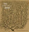 The Beautiful Brain. The Drawings of Ramon y Cajal - AAVV
