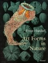 Art Forms in Nature - Haeckel, Ernst