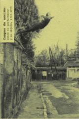 Campos de Acción 1: Entre el performance y el objeto 1949-1972 - Schimmel, Paul