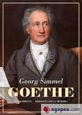 Goethe - Simmel, Georg