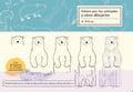 Como son los animales y cómo dibujarlos - AAVV