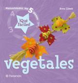 Manualidades en 5 pasos. Vegetales