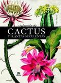 Selección de cactus y plantas suculentas - AAVV