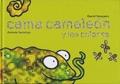 Cama Camaleón y los colores